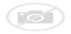 Capstone project wiki